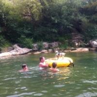 Local swimming at Ribaute