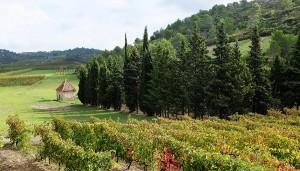 Autumn Landscape, South of France Holidays