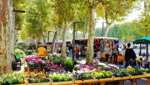 Narbonne market, South of France Holidays