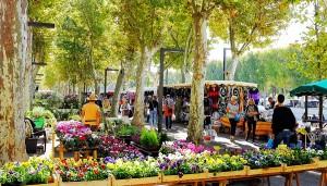 Le marché de Narbonne