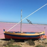 Salt flats at Gruissan with fantastic seafood restaurants