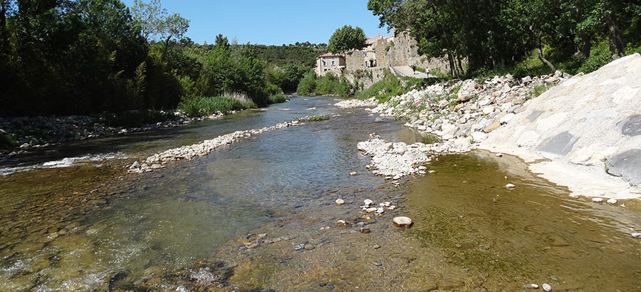 Riverside near Lagrasse